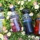 Ineke Floral Curiosities NEWS & GIVEAWAY