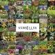 Düfte dokumentieren: Der neue Film 'Ssmellss'