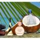 Kokosnuss-Fantasien: Duft von Kokosnuss und Sonnenmilch