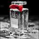 Stéphanie de Bruijn - Parfum sur Mesure